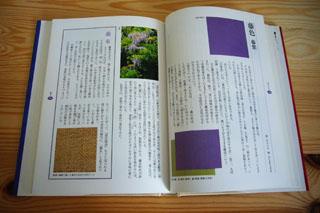 私の好きな本 その4 「日本の色辞典」