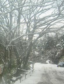 ものみんな 位置に着きたり 雪の夜