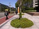 yuusei2.jpg