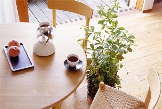 table-unit2.jpg